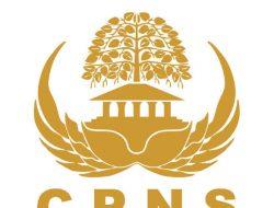 CPNS 2021 ; Formasi,jadwal pendaftaran dan kapan dibukannya