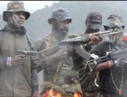 Pemda Papua Keluarkan 7 Pernyataan Sikap Terkait Sebutan KKB Menjadi Teroris